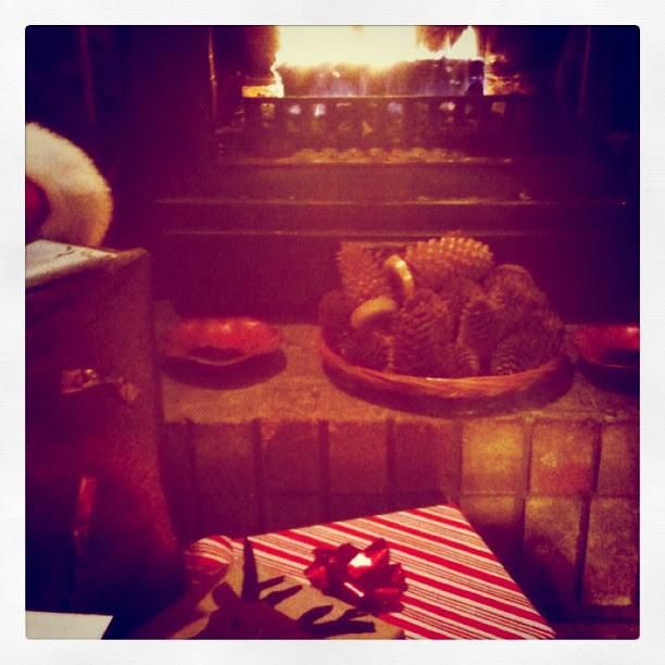 Presents, pine cones, and the fire