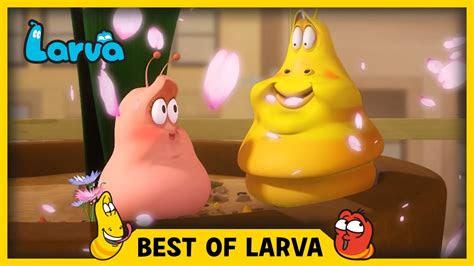 larva   larva funny cartoons  kids carto