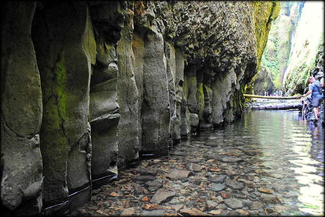 Rock Wall in Oneonta Gorge