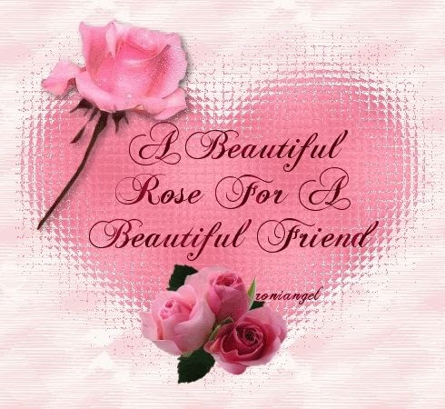 A Beautiful Rose For A Beautiful Friend Pictures Photos And Images