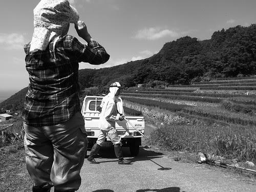 20120825 草刈り