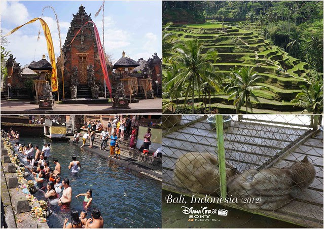 4D3N Bali, Indonesia Day 2
