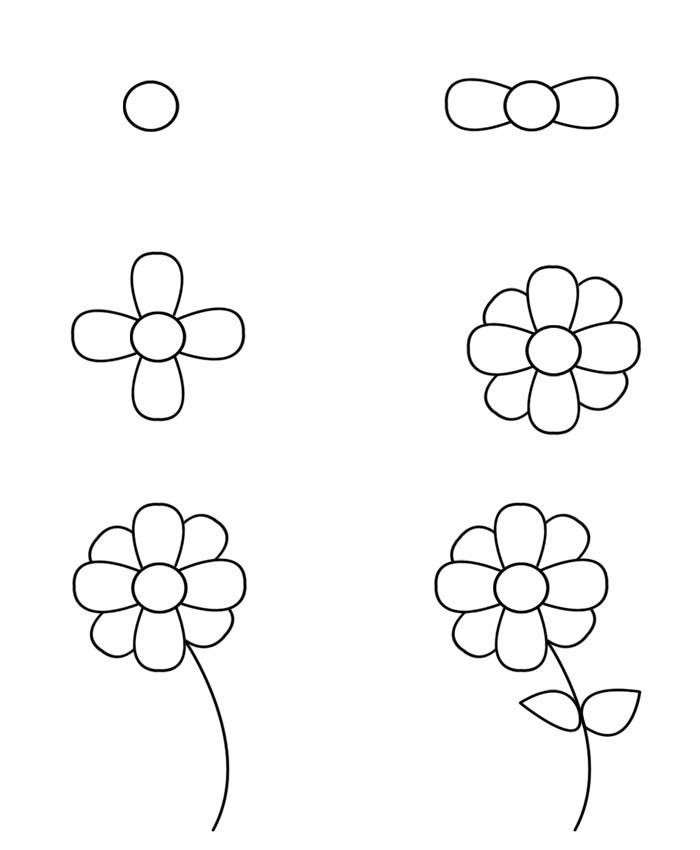 Drawing For Beginners Flowers Max Installer