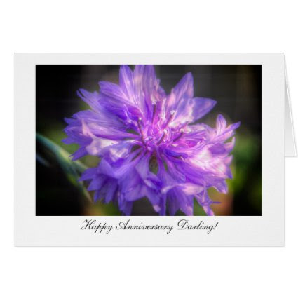 Bachelor's Button Cornflower - Happy Anniversary Greeting Card
