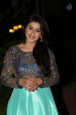 Nikki Galrani New Photos - 11 of 36