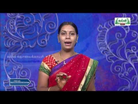 12th Office Management Decision Making Part 2  Kalvi TV