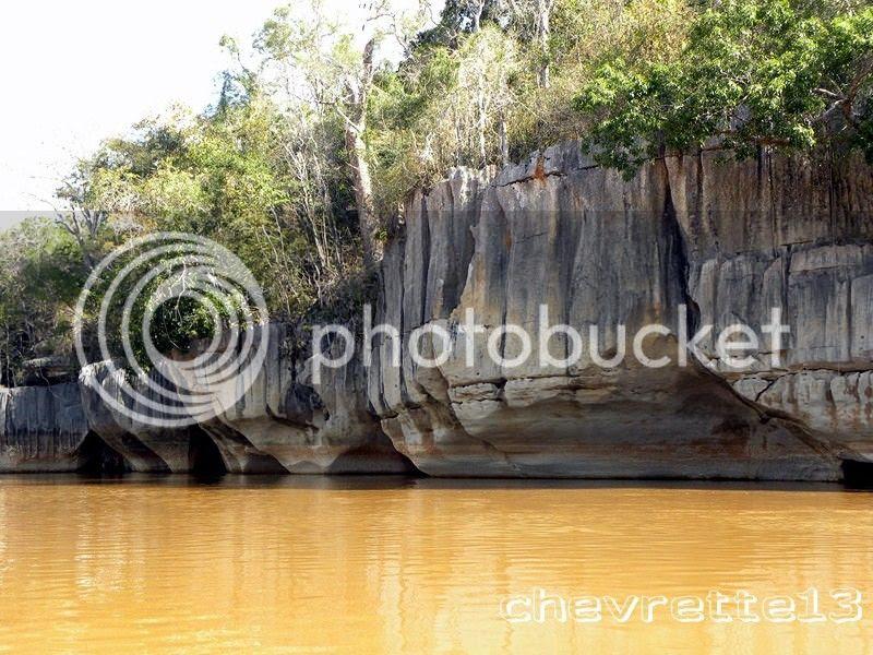 http://i1252.photobucket.com/albums/hh578/chevrette13/Madagascar/DSCN2133Copier_zpsb3e6f776.jpg