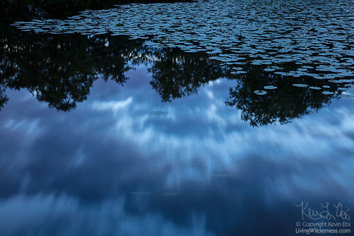 Storm Clouds Reflected on Pond, Parc des Sources, Brussels, Belgium