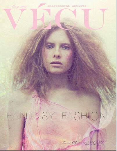 VECU cover