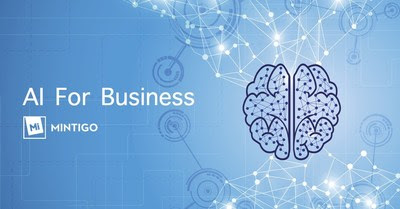 Mintigo - AI For Business