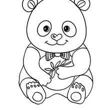 ausmalbilder tiere panda