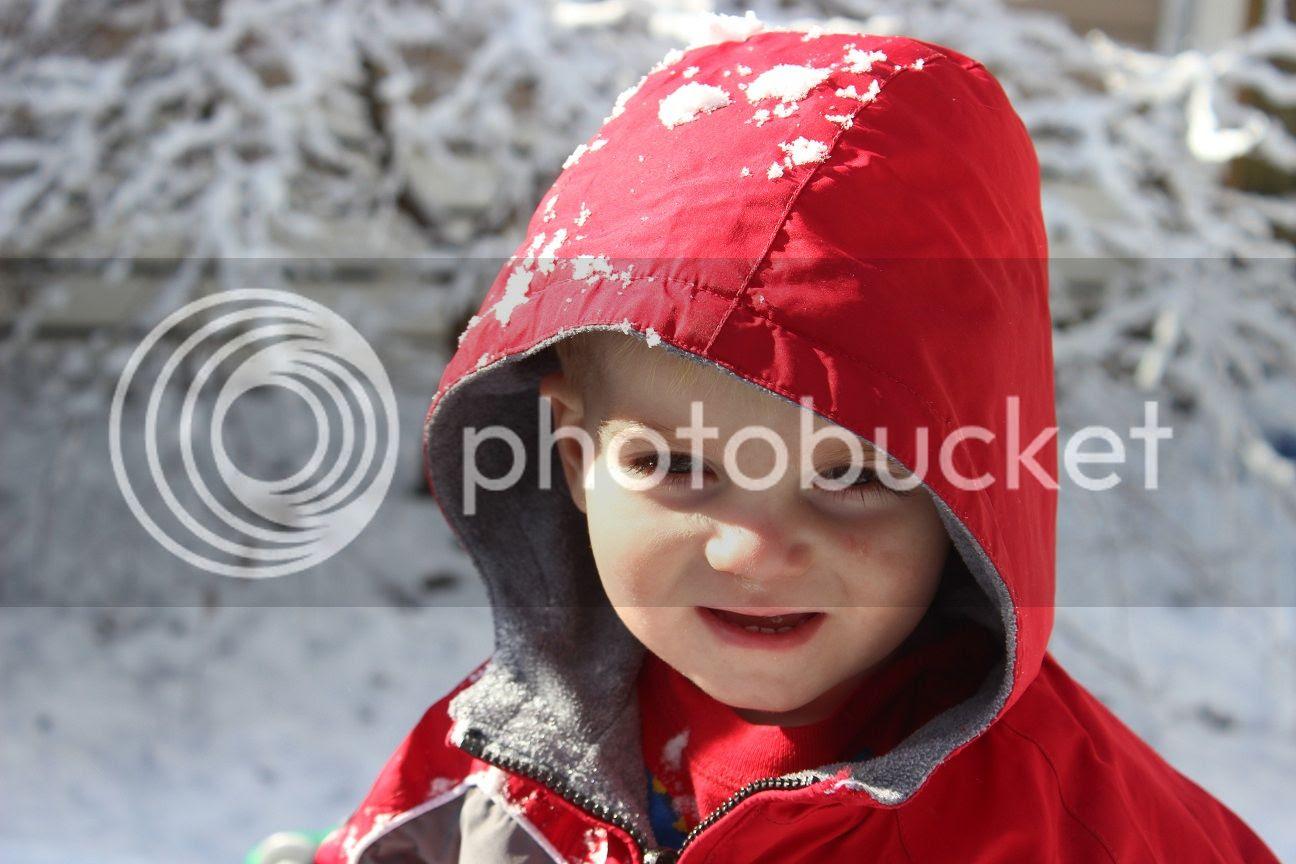 photo snow31_zps755efe7e.jpg
