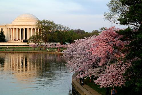 Washington DC Day 1 362-001