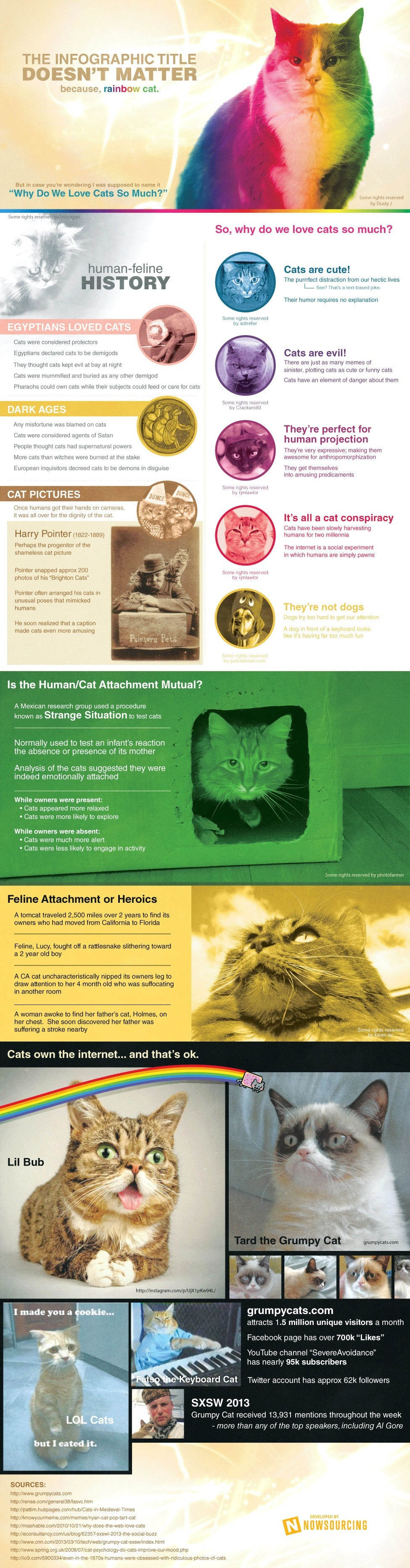 Why Do We Love Cats So Much? - infographic