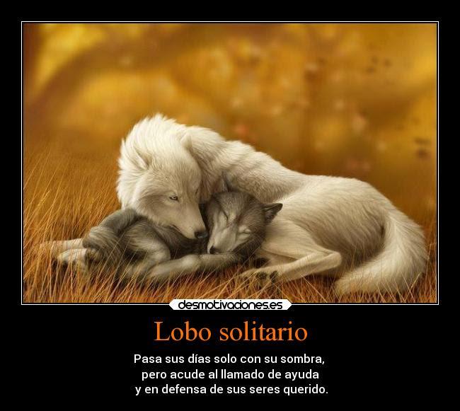 Lobo Solitario Desmotivaciones