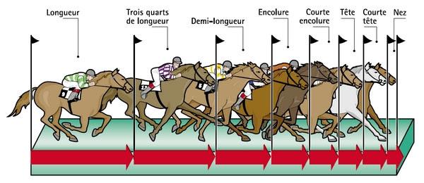 """Résultat de recherche d'images pour """"les en tetes des sites pmu chevaux attele"""""""