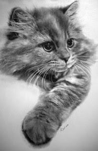 Dibujos De Gatos Hechos A Lápiz