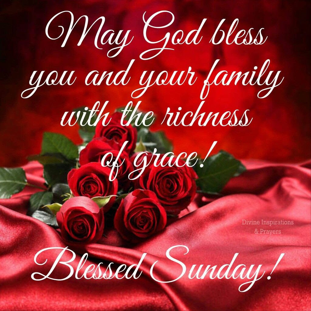 May God Bless You And Your Family With The Richness Of Grace