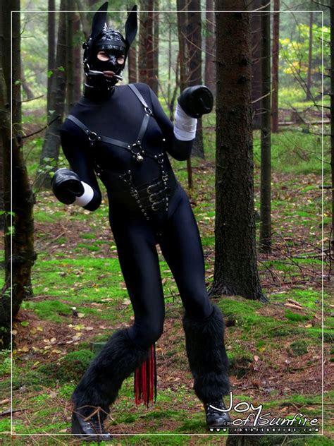 joy  sunfire   play  costume  cosplay