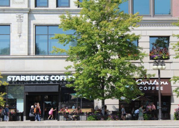photo Chicago311_zpsc94c081d.jpg