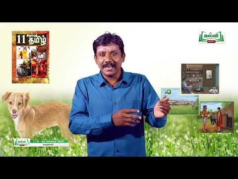 11th Tamil கதையியல் யானை டாக்டர் இயல் 2 Kalvi TV