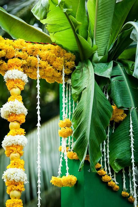 Best 25  South indian weddings ideas on Pinterest   Tamil