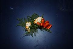 flowers_6165 web