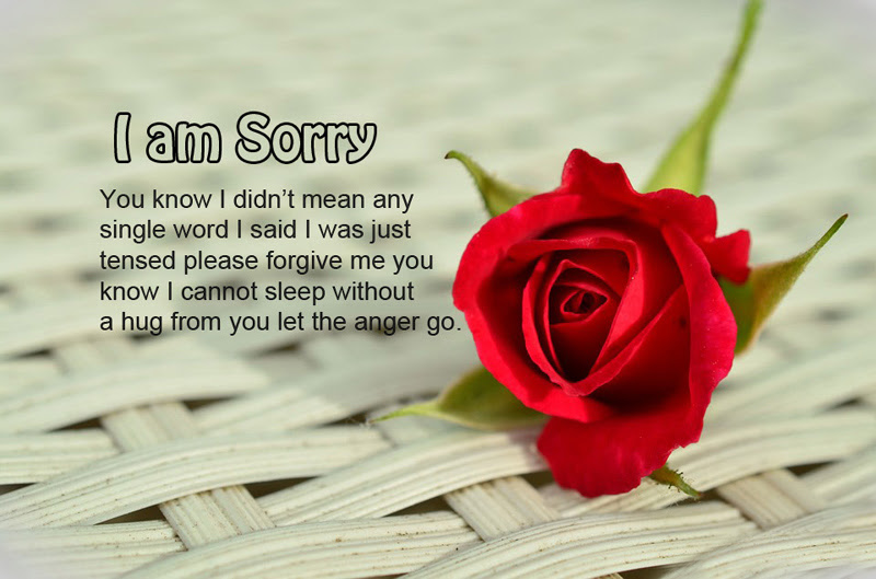 I Am Sorry Messages For Wife Sweet Romantic Wishesmsg