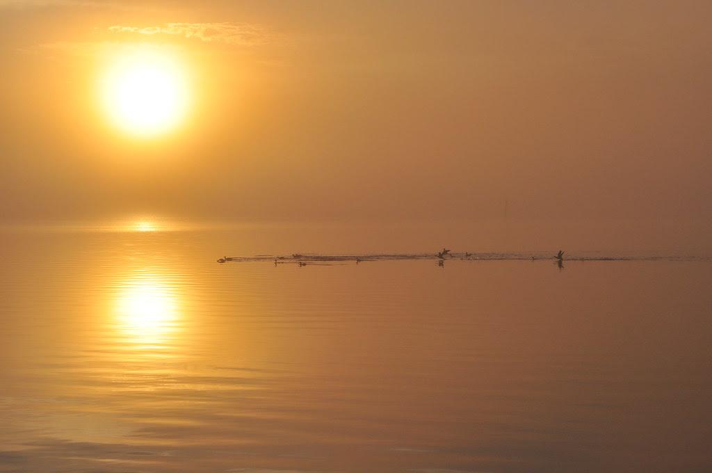 Metompkin Bay Sunrise 7