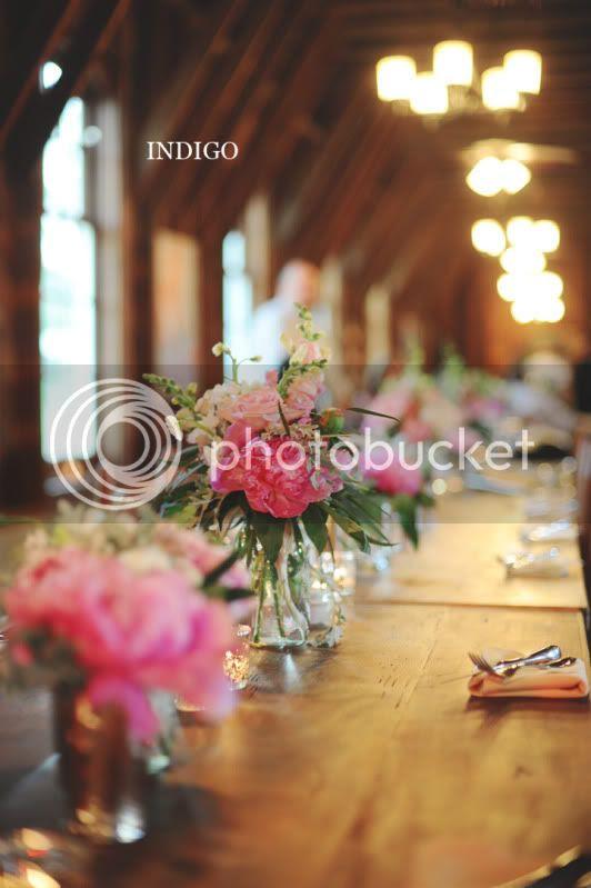 Charlotte Wedding Photographers Indigo Photography Blog