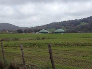 biogas-piandella carlotta