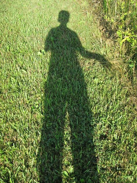 summertime silhouette II