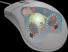 Mouse mechanism diagram.svg