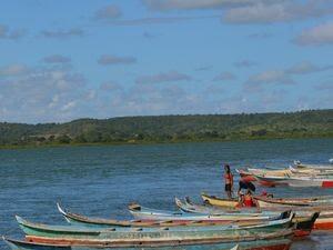 Parte da população ainda vive da pesca no Rio São Francisco (Foto: Marina Fontenele/G1 SE)