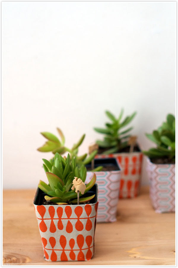 plant succulents present gift wrapper wrapping paper template stencil wrap diy instructions idea