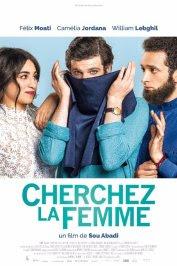 background picture for movie Cherchez la femme