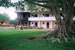 Kilanguni Lodge