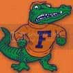 gators Pictures, Images and Photos