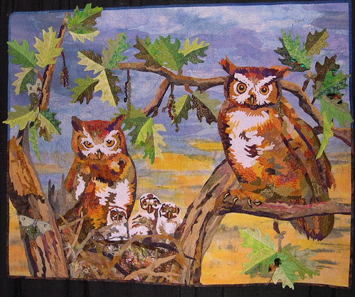 Out of the Northern Forest: The Great Horned Owl Family