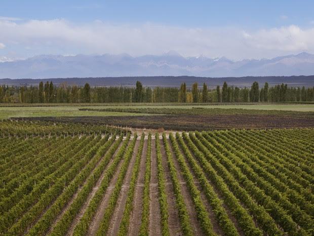 Família se perdeu na Patagônia Argentina ao buscar vinícola lendária, varginha (Foto: Pedro Henrique Barros/Wine World Adventure)