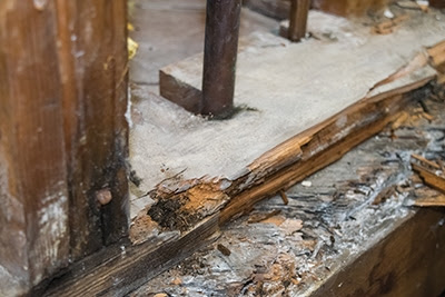Repairing A Severely Rotted Subfloor - Extreme How To