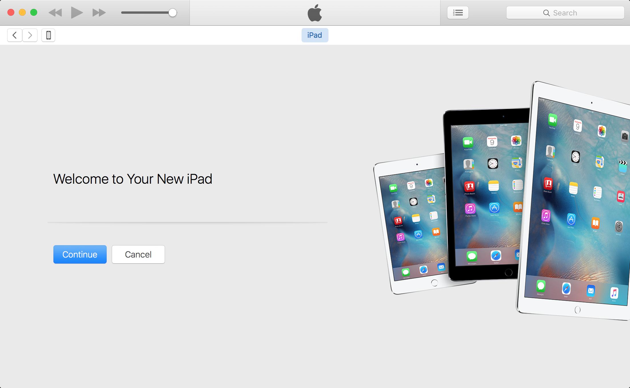 iTunes app continue restore