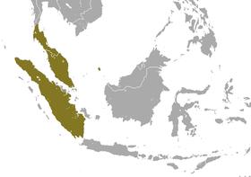 Sunda Loris area.png