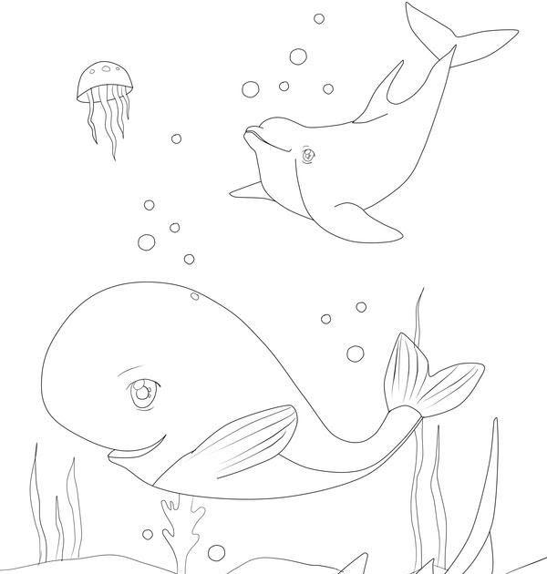 malvorlagen unterwasser tiere kostenlos  aglhk