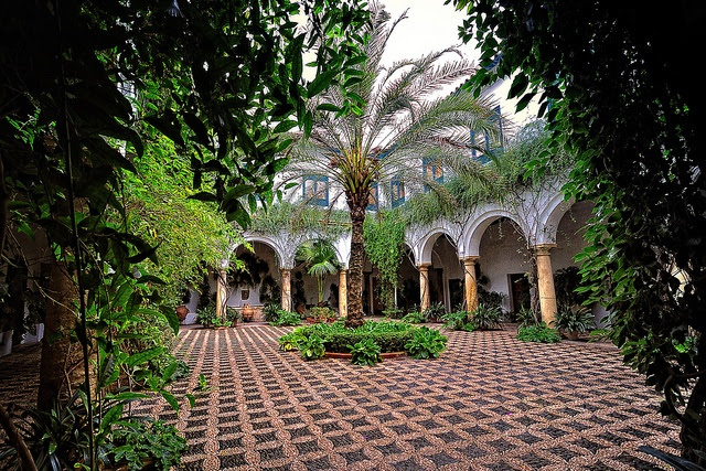 I also would love to go back to El Palacio de los Marqueses de Viana. If you like gardens and medieval museums, this is the place. Love it.