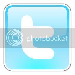 Twitter logo - on blog