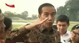 presiden jokowi optimis gif jokowi optimis naik