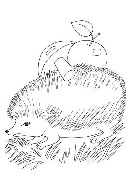 ausmalbilder tiere wolf  kostenlose malvorlagen ideen