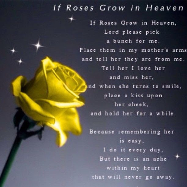 If Roses Grow In Heaven Pictures Photos And Images For Facebook