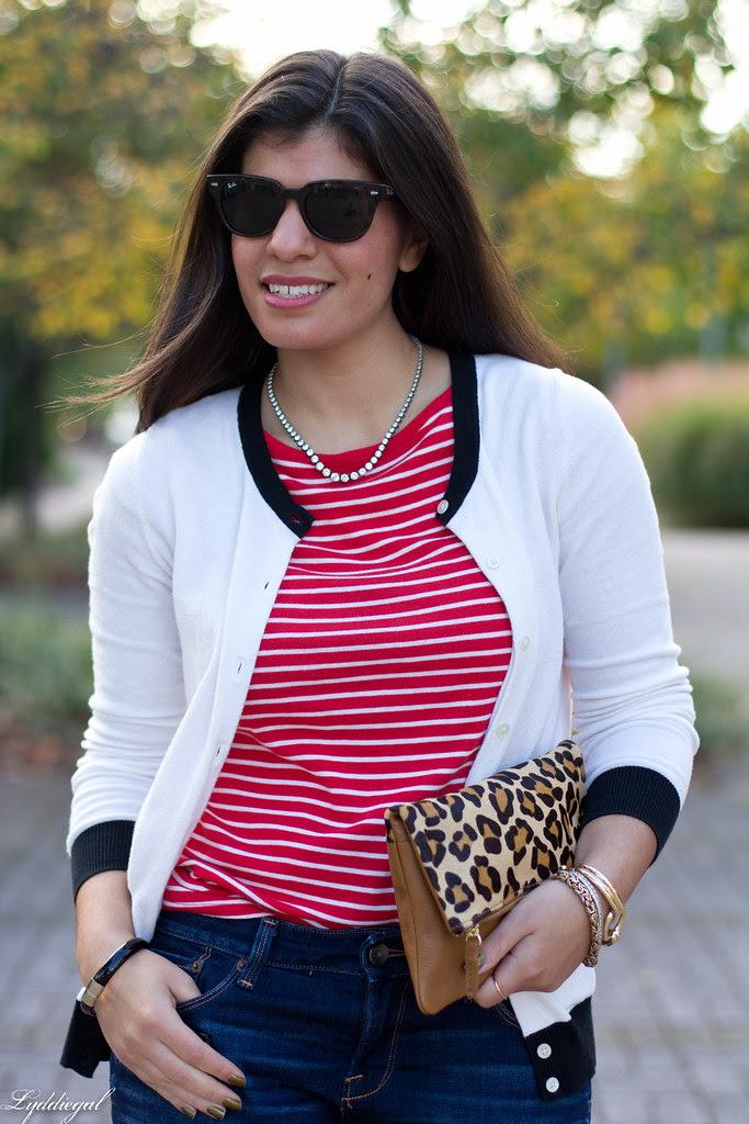 stripes and leo-4.jpg
